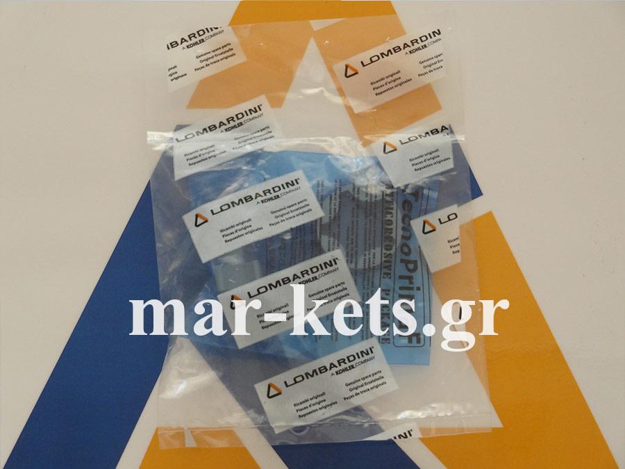 Αντλία λαδιού RUGGERINI CRD100, CRD951, P101, P101L, RP170, RP178